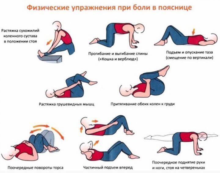 упражнения для позвонка в картинках