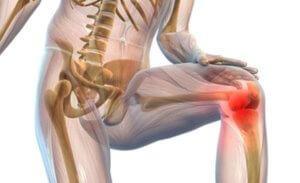 Лечение тазобедренного сустава лекарством цельт питание при артрозе локтевого сустава